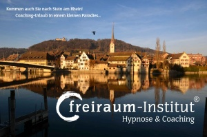 freiraum-Institut