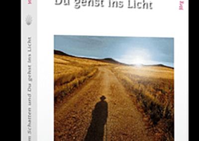 Buch: Jakobsweg-Selbsterfahrungsbericht